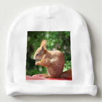 Eekhoorn Baby Mutsje
