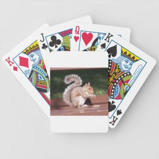 eekhoorn bicycle speelkaarten