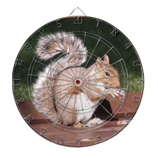 eekhoorn dartbord