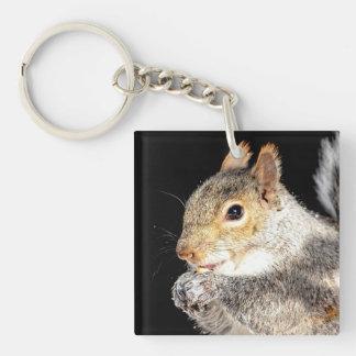Eekhoorn die een noot eet sleutelhanger