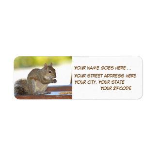 Eekhoorn die het Adresetiket van de Etiket