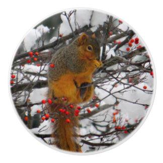 Eekhoorn in Sneeuw 6234 Keramische Knop