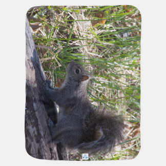 Eekhoorn op een Logboek Babydoek