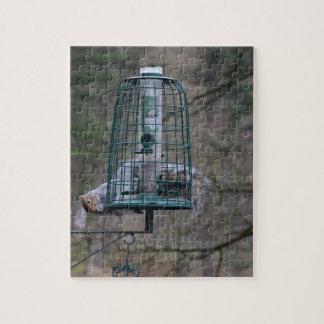 Eekhoorn op vogelvoeder legpuzzel