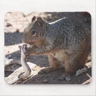 Eekhoorn versus Ratelslang Mousepad Muismat