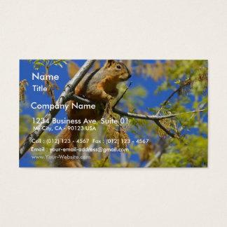 Eekhoorn Visitekaartjes