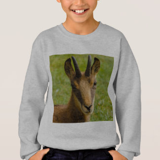 een alpien suède op het Sweatshirt van Hanes