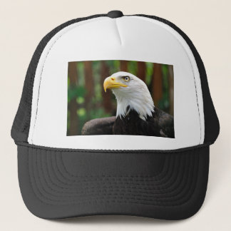 Een Amerikaans van de Patriot Kaal Eagle Trucker Pet