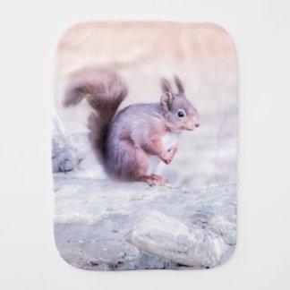 Een baby rode eekhoorn spuugdoekje