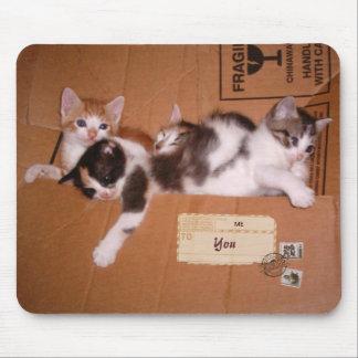 Een doos van (klantgerichte) Katjes Muismat