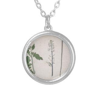 Een een een plant, Zaad, en Bloem van de Radijs Zilver Vergulden Ketting