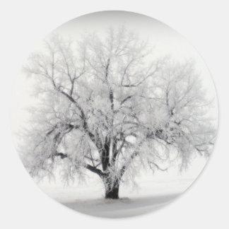 Een eenzame Boom Frostry in de Prairie Noord- van Ronde Sticker
