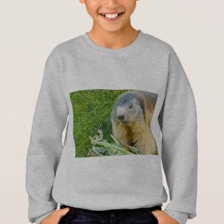 een gezellige marmot op ComfortBlend®Swheatshirt Trui
