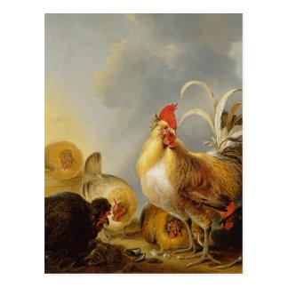 Een groep Kip van het Boerenerf, 1643 Briefkaart