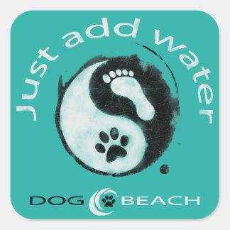 Een grote stiker voor hond en strandminnaars! vierkante sticker