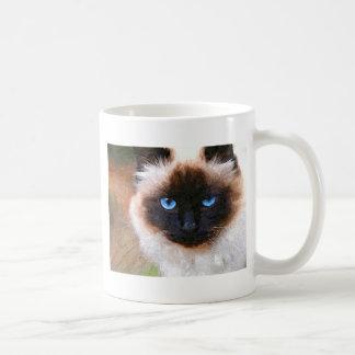 Een kat Birman Koffiemok
