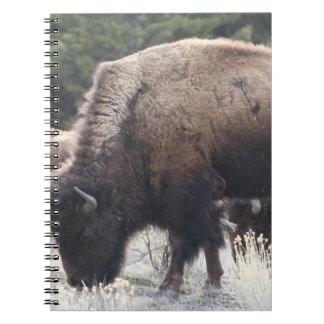 Een kudde van Bruine Bizon weidt in een grasrijke Ringband Notitieboek