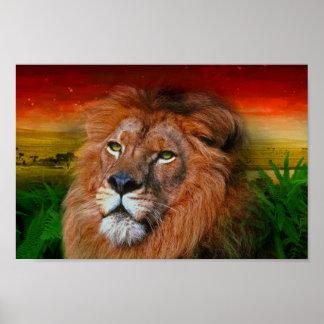 Één Leeuw II van de Liefde - Poster/Druk Poster