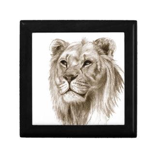 Een leeuw - zonder het Art. van de Schets van de Decoratiedoosje