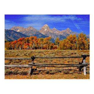 Een ogenblik in Wyoming in de Herfst Briefkaart