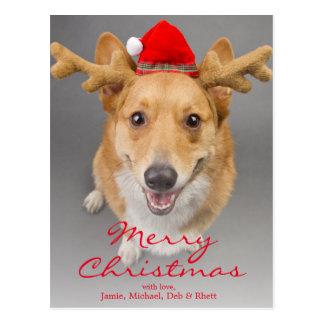 Een rode en witte hond Pembroke Welse Corgi Briefkaart