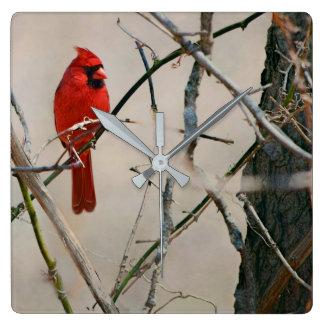 Een rode HoofdVogel op een Tak in het Bos Vierkante Klok