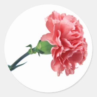 Een roze sticker van de Anjer