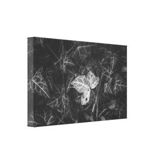 Een verschillend blad canvas print