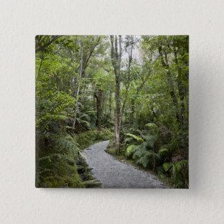 Een weg door een regenwoud bij de basis van vierkante button 5,1 cm