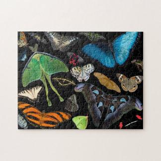 Een wereld van Vlinders en Motten Puzzel