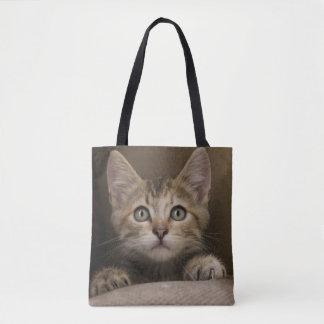 Een zeer Zoet Katje van de Gestreepte kat