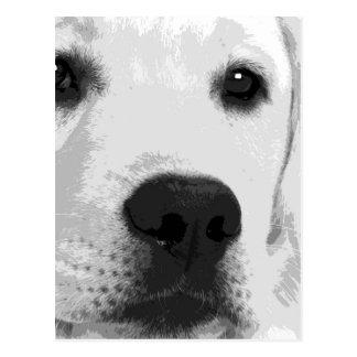 Een zwart-witte Labrador Briefkaart
