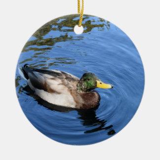 Eend van de Wilde eend van het Water van het Rond Keramisch Ornament