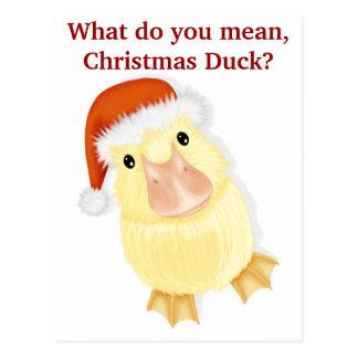 Eendje in het Briefkaart van Kerstmis van het Pet