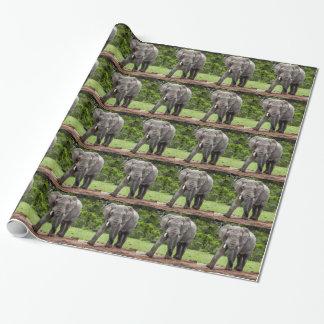 Eenzame Afrikaanse olifantsbull. Inpakpapier