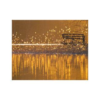 Eenzame bank door het meer in het gouden licht canvas afdruk