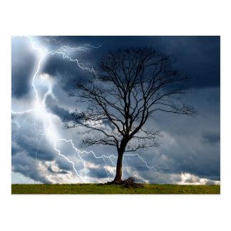 Eenzame boom en bliksem briefkaart