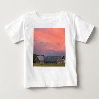 Eenzame Schuur Baby T Shirts