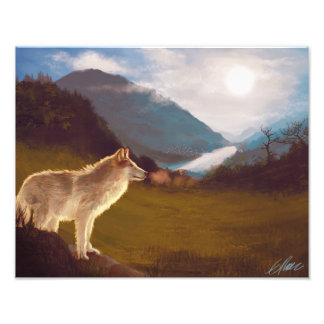Eenzame Wolf op de Druk van de Kunst van de Blik Foto Prints