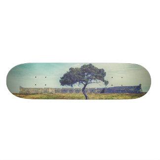 Eeuwig 21,6 Cm Skateboard Deck