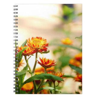 Eeuwige Bloemen Notitieboek