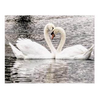 Eeuwige Liefde Briefkaart