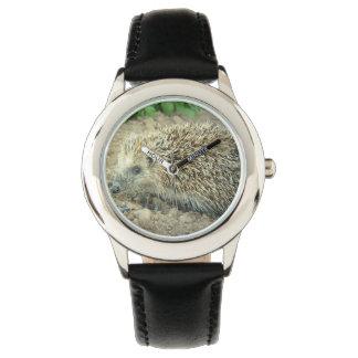 Egel Horloges