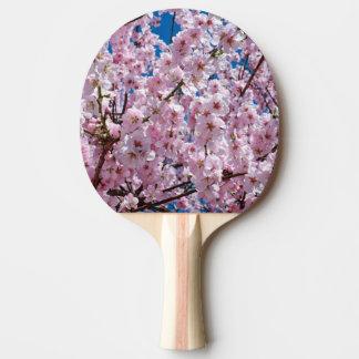 elegante roze de boomfoto van de kersenbloesem tafeltennis bat