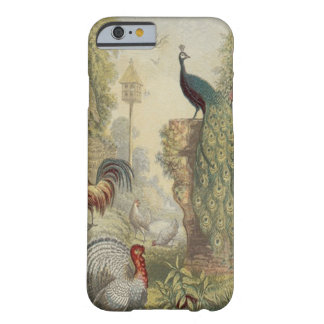 Elegante Vintage Pauw & Andere Vogels Barely There iPhone 6 Hoesje