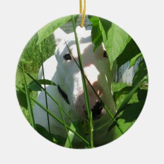 Engels Bull terrier die door de Bladeren gluren Rond Keramisch Ornament