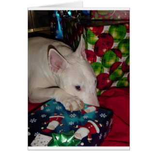 Engelse bull terrier aanwezige Kerstmis Wenskaart