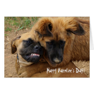Engelse Mastiff & de Grappige Valentijn kaart van