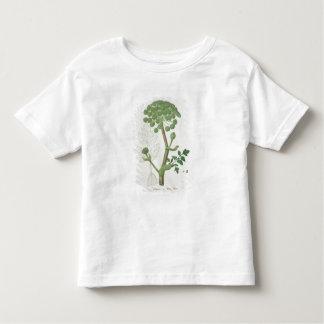Engelwortel Archangelica van 'Phytographie Kinder Shirts