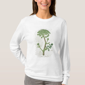 Engelwortel Archangelica van 'Phytographie T Shirt